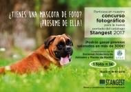 Concurso fotográfico Stangest