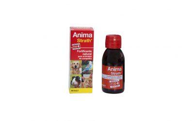 Anima-Strath – experiencias de una veterinaria