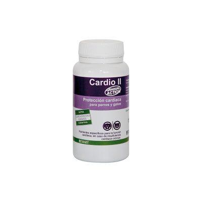 Cardio II - Stangest