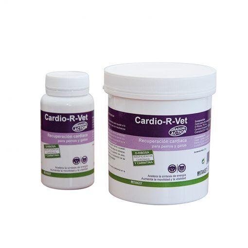 Cardio-R-Vet - Stangest