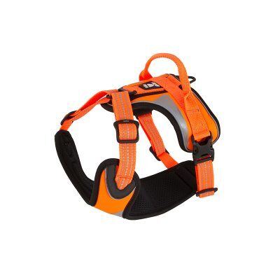 Dazzle Harness Orange Hurtta