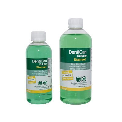 DentiCan soluble - Stangest