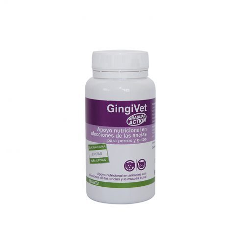 GingiVet - Stangest