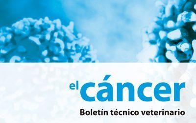 Protocolo y Boletín técnico del cáncer