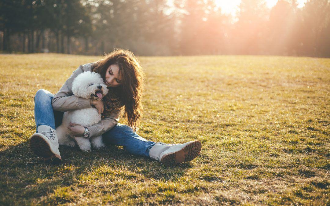 Pelos y patas: medicina de cannabis para mascotas