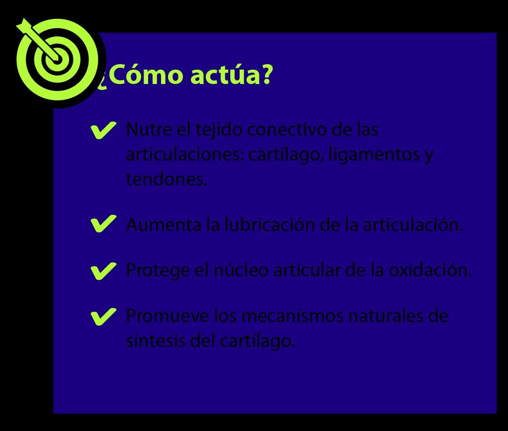 CondroCare