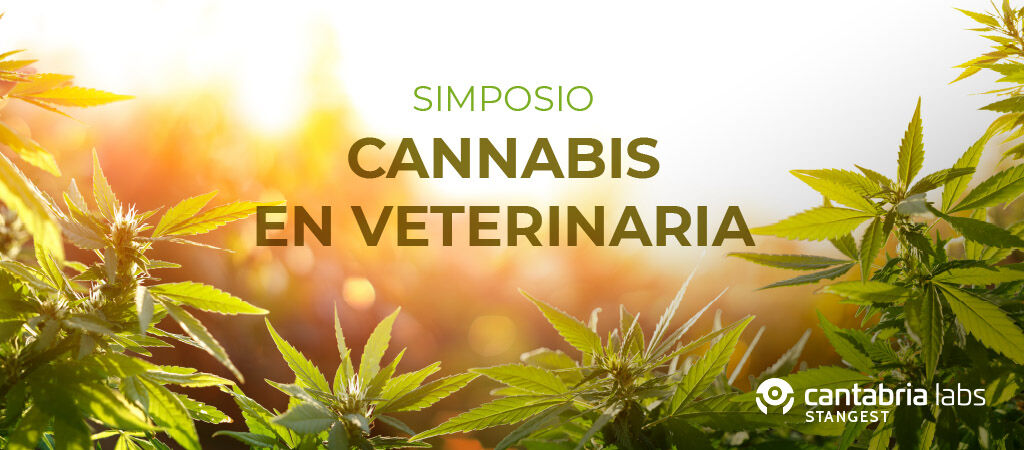 Simposio Cannabis en Veterinaria