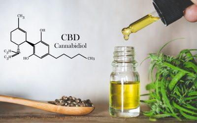 Protegido: Dosier resumen simposio «Cannabis en Veterinaria»